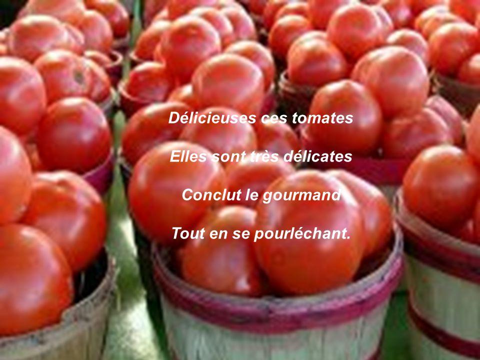 Délicieuses ces tomates Elles sont très délicates Conclut le gourmand Tout en se pourléchant.