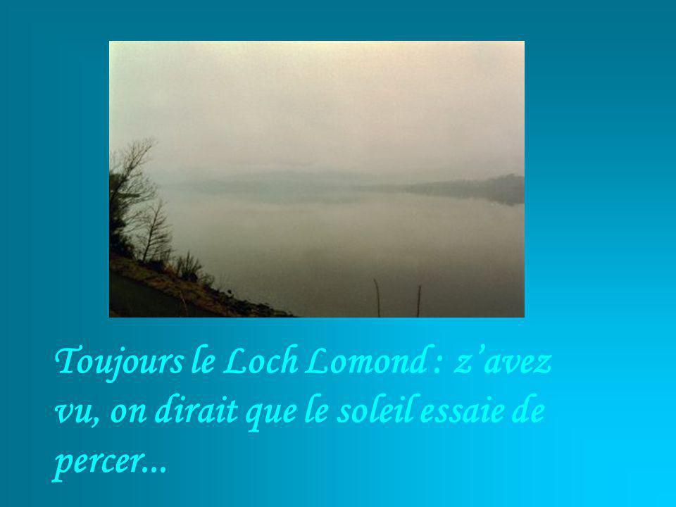 Toujours le Loch Lomond : zavez vu, on dirait que le soleil essaie de percer...