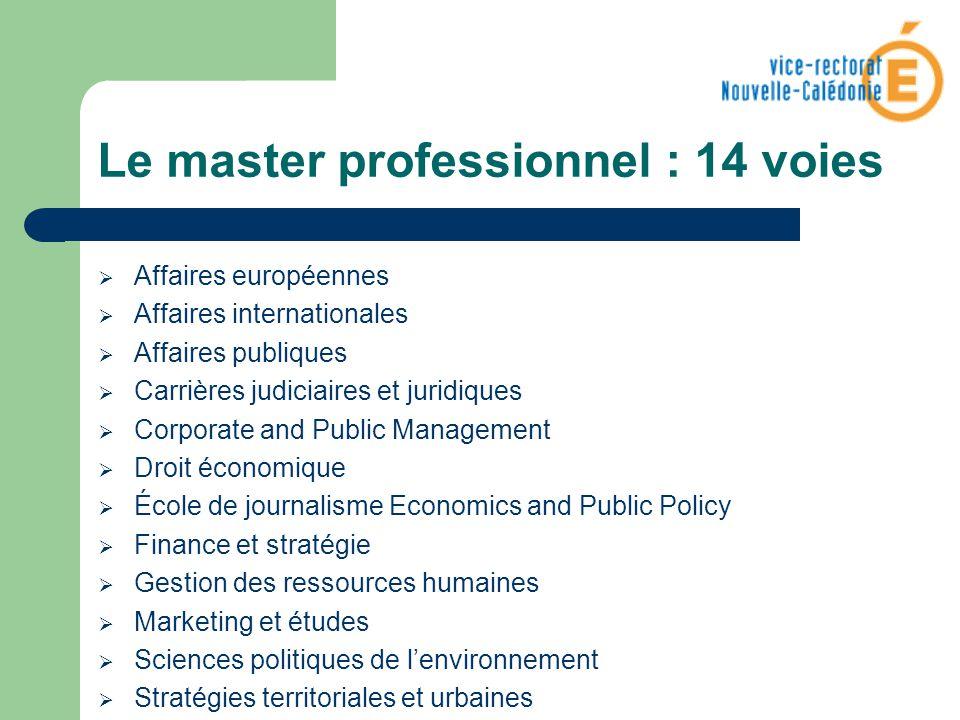 Le master professionnel : 14 voies Affaires européennes Affaires internationales Affaires publiques Carrières judiciaires et juridiques Corporate and