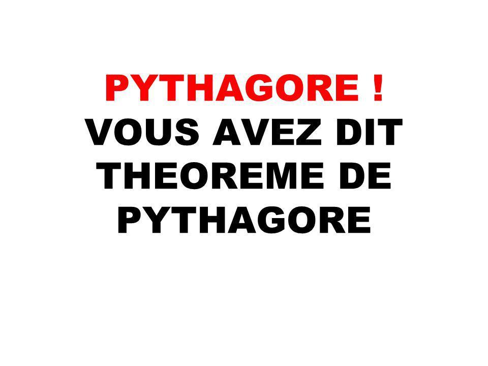 PYTHAGORE ! VOUS AVEZ DIT THEOREME DE PYTHAGORE