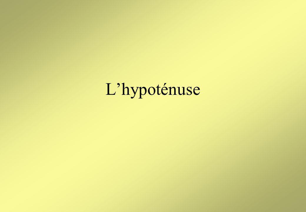 Lhypoténuse