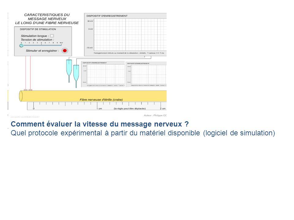 Comment évaluer la vitesse du message nerveux ? Quel protocole expérimental à partir du matériel disponible (logiciel de simulation)