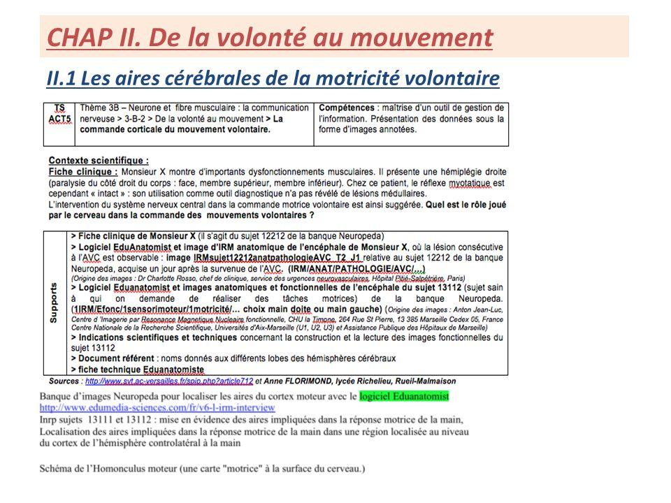 II.1 Les aires cérébrales de la motricité volontaire CHAP II. De la volonté au mouvement