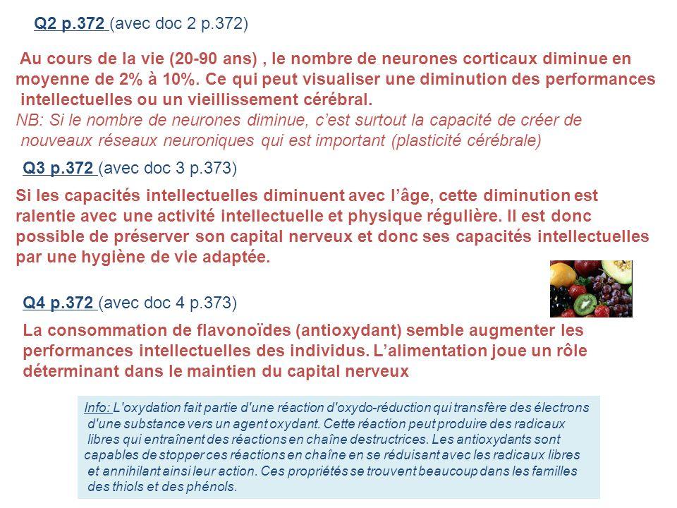 Q2 p.372 (avec doc 2 p.372) Q3 p.372 (avec doc 3 p.373) Q4 p.372 (avec doc 4 p.373) Au cours de la vie (20-90 ans), le nombre de neurones corticaux di