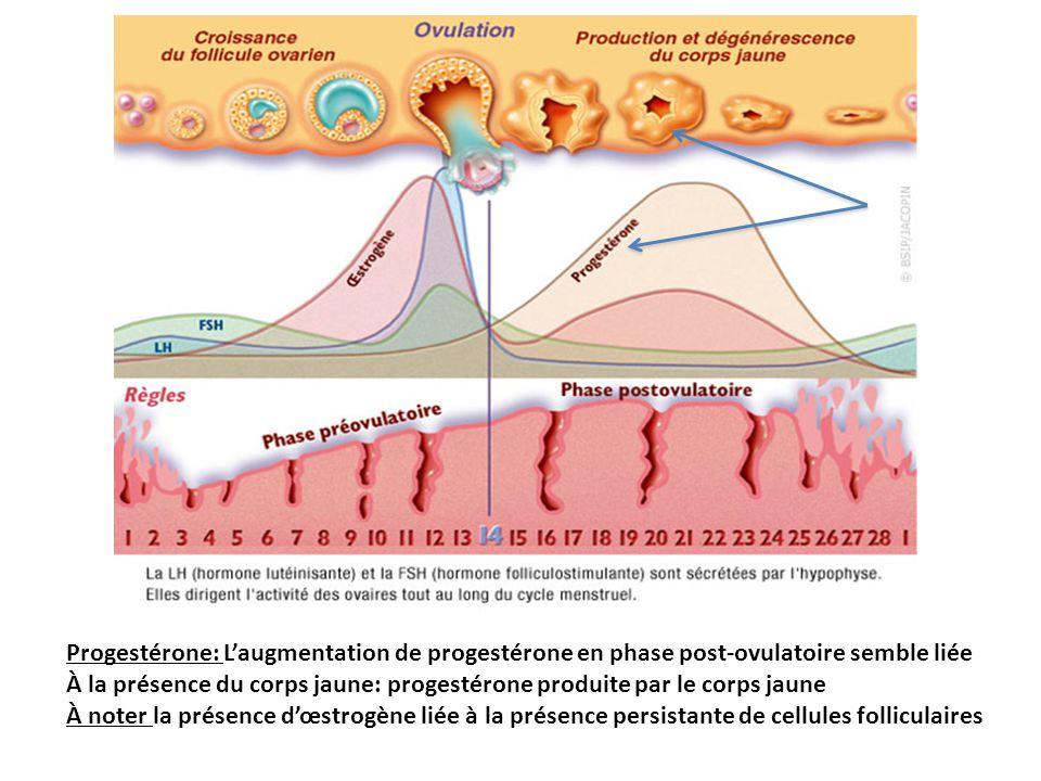 Progestérone: Laugmentation de progestérone en phase post-ovulatoire semble liée À la présence du corps jaune: progestérone produite par le corps jaun