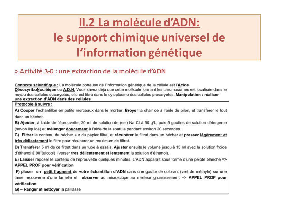 II.2 La molécule dADN: le support chimique universel de linformation génétique > Activité 3-0 : une extraction de la molécule dADN