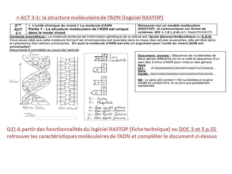 > ACT 3-1: la structure moléculaire de lADN (logiciel RASTOP) Q1) A partir des fonctionnalités du logiciel RASTOP (fiche technique) ou DOC 3 et 5 p.55 retrouver les caractéristiques moléculaires de lADN et compléter le document ci-dessus