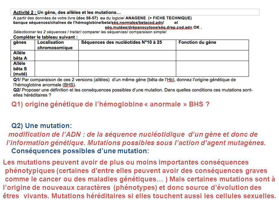 Q1) origine génétique de lhémoglobine « anormale » BHS .