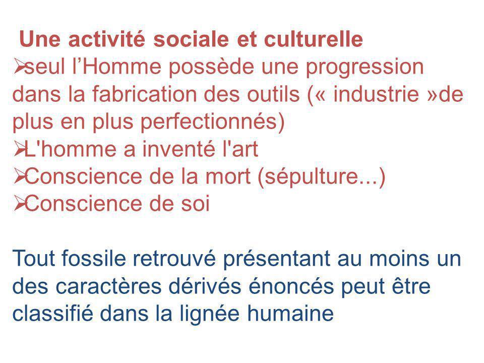 Une activité sociale et culturelle seul lHomme possède une progression dans la fabrication des outils (« industrie »de plus en plus perfectionnés) L'h