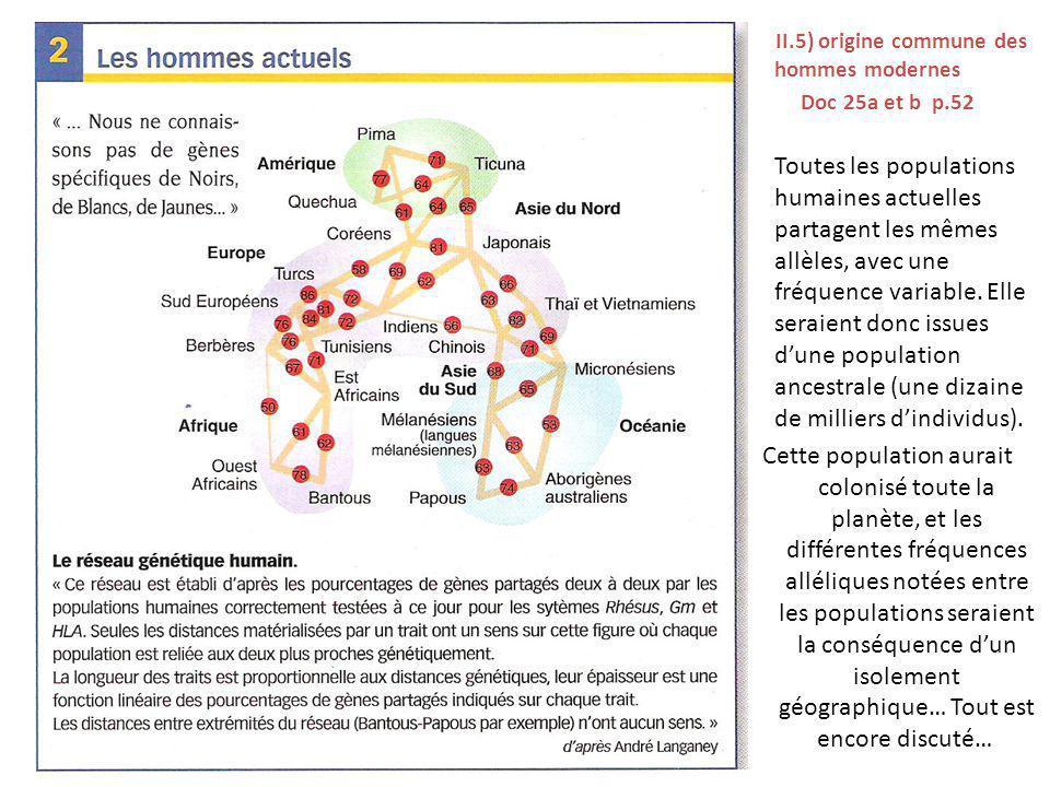 L II.5) origine commune des hommes modernes Doc 25a et b p.52 Toutes les populations humaines actuelles partagent les mêmes allèles, avec une fréquenc