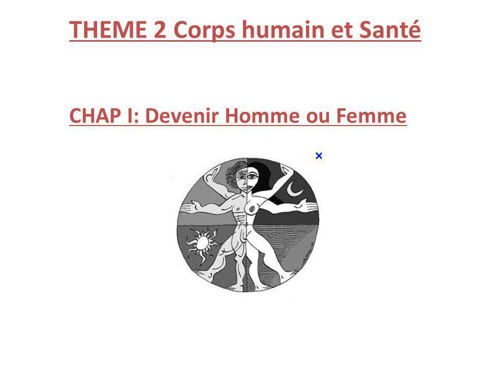 THEME 2 Corps humain et Santé CHAP I: Devenir Homme ou Femme