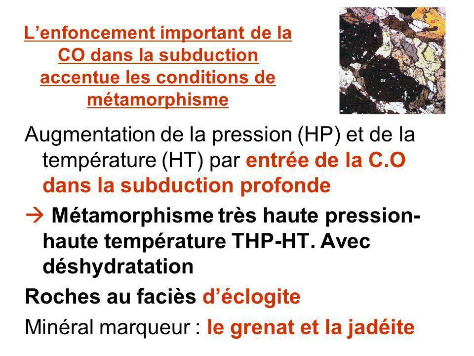 Lenfoncement important de la CO dans la subduction accentue les conditions de métamorphisme Augmentation de la pression (HP) et de la température (HT) par entrée de la C.O dans la subduction profonde Métamorphisme très haute pression- haute température THP-HT.