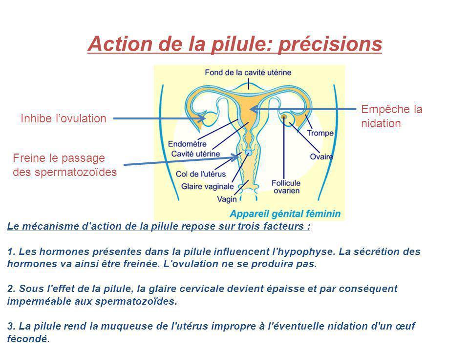 Action de la pilule: précisions Empêche la nidation Inhibe lovulation Freine le passage des spermatozoïdes Le mécanisme daction de la pilule repose su