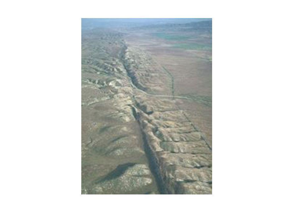 Datation relative et fossiles