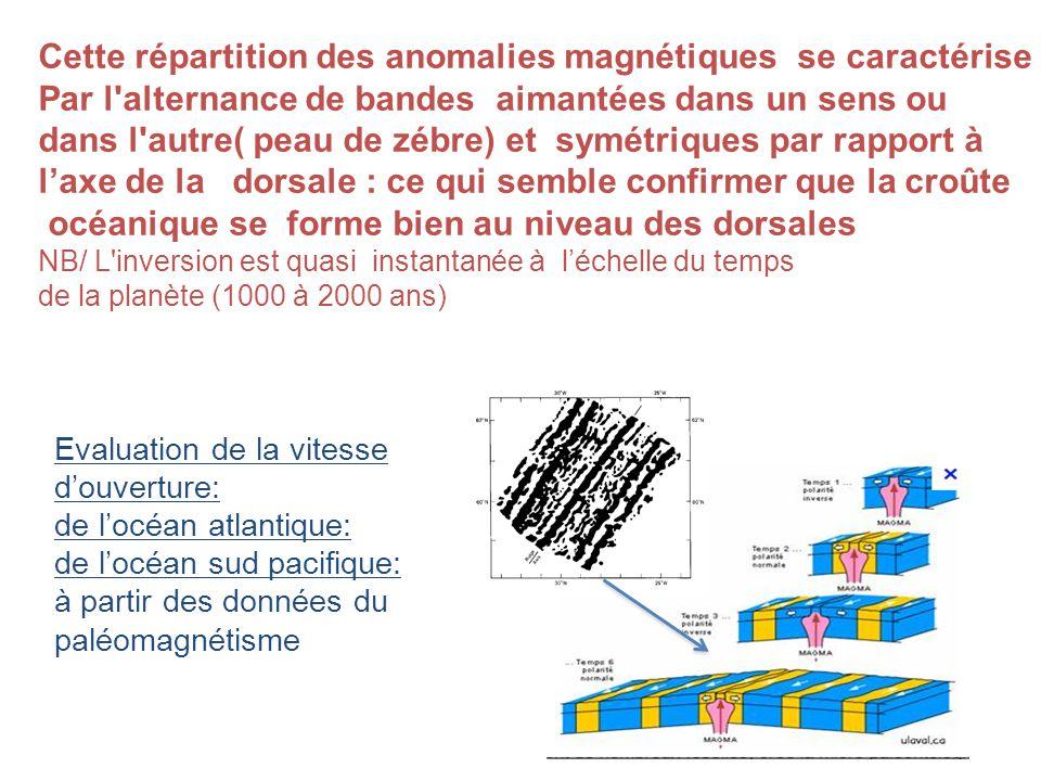 Cette répartition des anomalies magnétiques se caractérise Par l alternance de bandes aimantées dans un sens ou dans l autre( peau de zébre) et symétriques par rapport à laxe de la dorsale : ce qui semble confirmer que la croûte océanique se forme bien au niveau des dorsales NB/ L inversion est quasi instantanée à léchelle du temps de la planète (1000 à 2000 ans) Evaluation de la vitesse douverture: de locéan atlantique: de locéan sud pacifique: à partir des données du paléomagnétisme