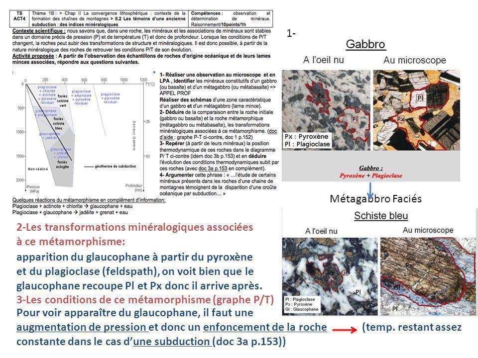 Métagabbro Faciés 2-Les transformations minéralogiques associées à ce métamorphisme: apparition du glaucophane à partir du pyroxène et du plagioclase