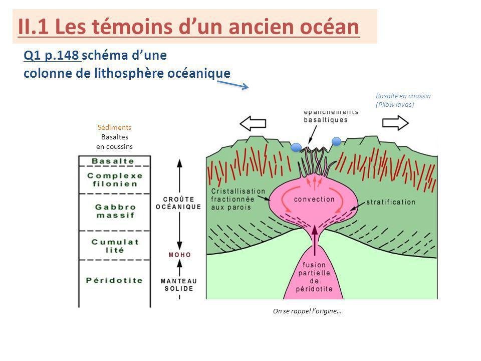 II.1 Les témoins dun ancien océan Q1 p.148 schéma dune colonne de lithosphère océanique Sédiments Basaltes en coussins Basalte en coussin (Pilow lavas