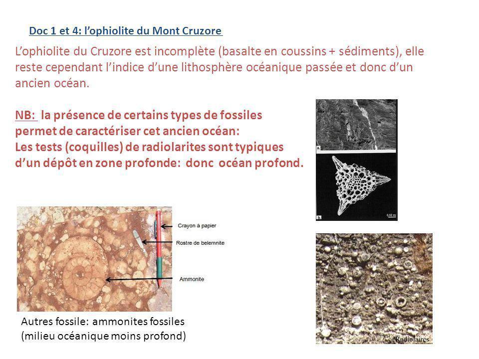 Commentaires: La différence de densité entre lasthénosphère et la lithosphère océanique âgée est la principale cause de la subduction.