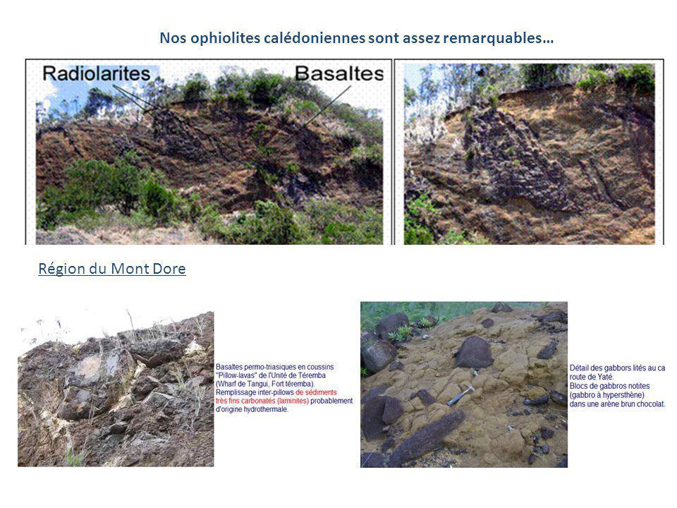 Nos ophiolites calédoniennes sont assez remarquables… Région du Mont Dore