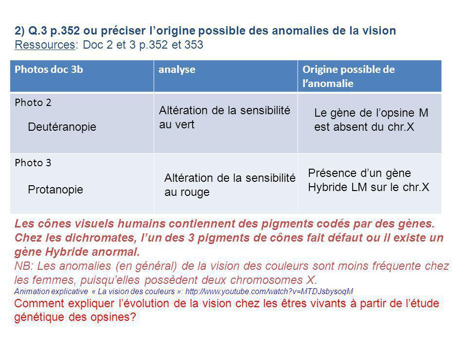 2) Q.3 p.352 ou préciser lorigine possible des anomalies de la vision Ressources: Doc 2 et 3 p.352 et 353 Photos doc 3banalyseOrigine possible de lano