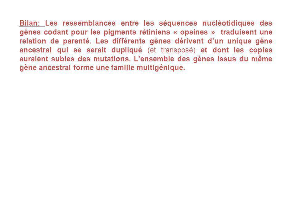 Bilan: Les ressemblances entre les séquences nucléotidiques des gènes codant pour les pigments rétiniens « opsines » traduisent une relation de parent