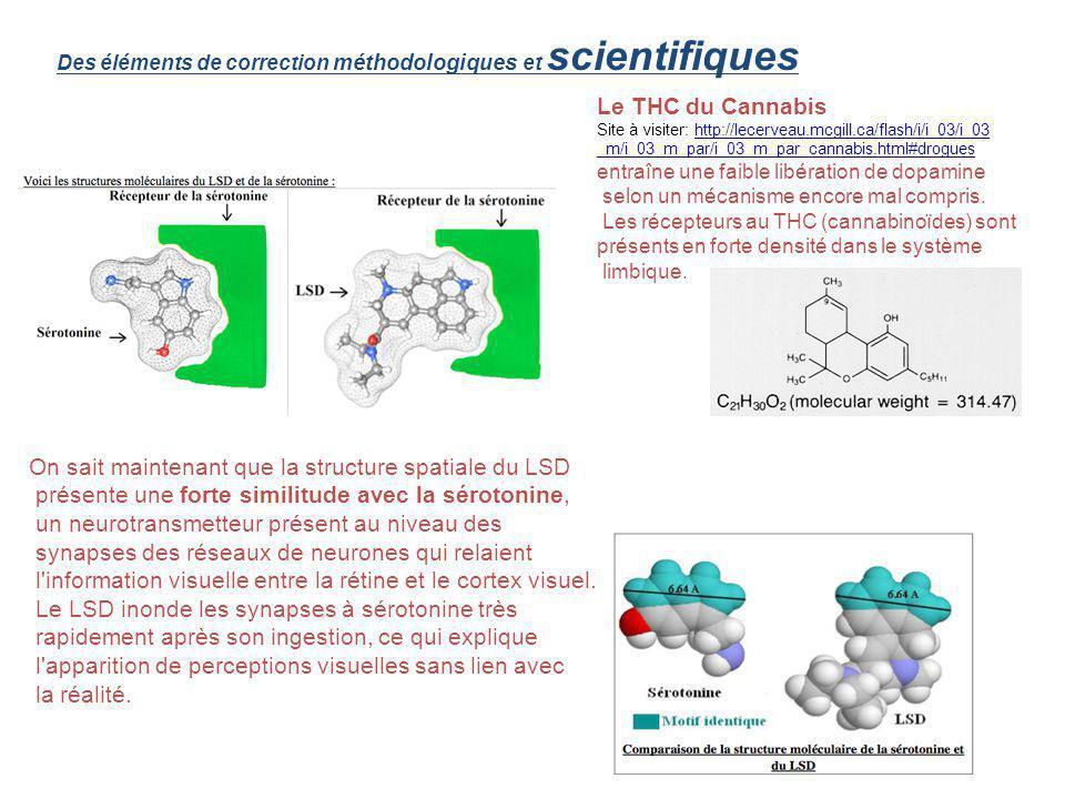 Des éléments de correction méthodologiques et scientifiques On sait maintenant que la structure spatiale du LSD présente une forte similitude avec la