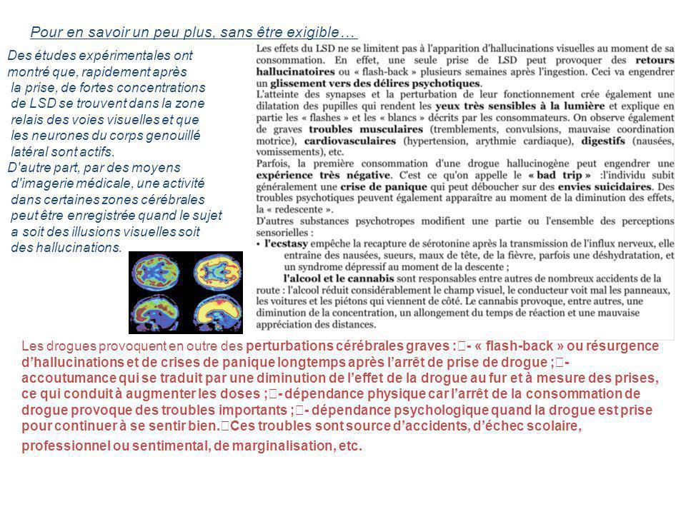 Pour en savoir un peu plus, sans être exigible… Des études expérimentales ont montré que, rapidement après la prise, de fortes concentrations de LSD s