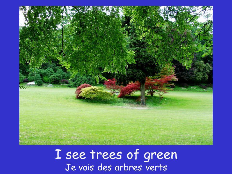 I see trees of green Je vois des arbres verts