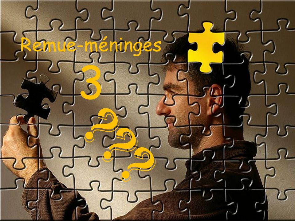 Remue-méninges 3 ???