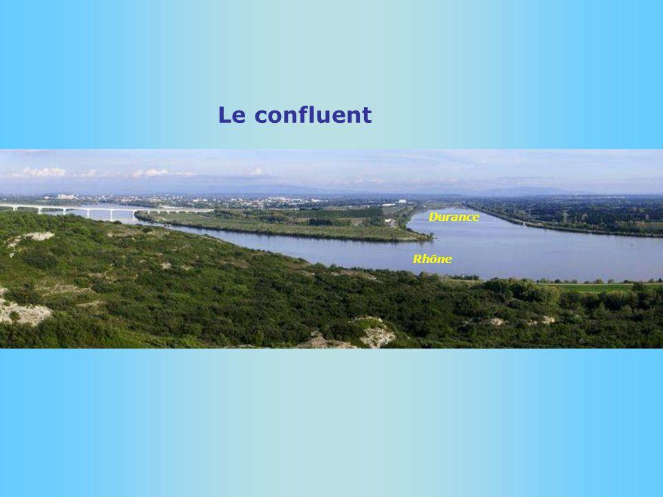 Confluent avec le Rhône Avignon