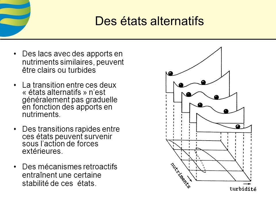 Des lacs avec des apports en nutriments similaires, peuvent être clairs ou turbides La transition entre ces deux « états alternatifs » nest généralement pas graduelle en fonction des apports en nutriments.