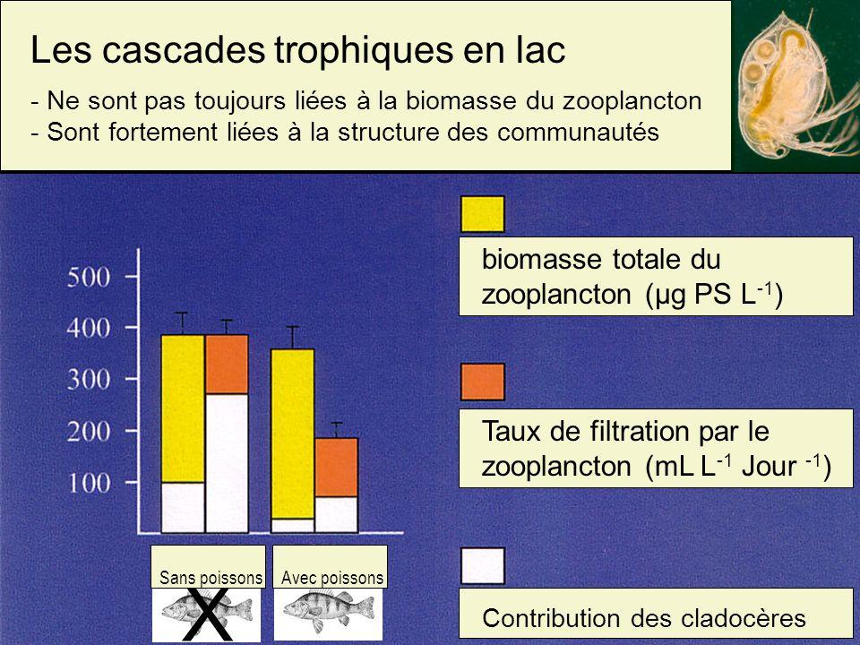 X Les cascades trophiques en lac - Ne sont pas toujours liées à la biomasse du zooplancton - Sont fortement liées à la structure des communautés biomasse totale du zooplancton (µg PS L -1 ) Taux de filtration par le zooplancton (mL L -1 Jour -1 ) Contribution des cladocères Sans poissons Avec poissons