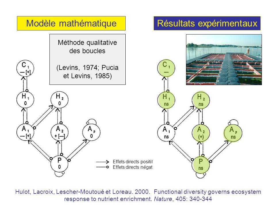 Modèle mathématiqueRésultats expérimentaux Méthode qualitative des boucles (Levins, 1974; Pucia et Levins, 1985) Effets directs positifs Effets directs négatifs Hulot, Lacroix, Lescher-Moutoué et Loreau.