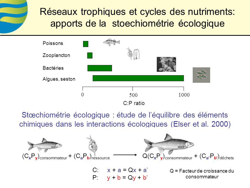 0 500 1000 Algues, seston Bactéries Zooplancton Poissons C:P ratio Stœchiométrie écologique : étude de léquilibre des éléments chimiques dans les interactions écologiques (Elser et al.