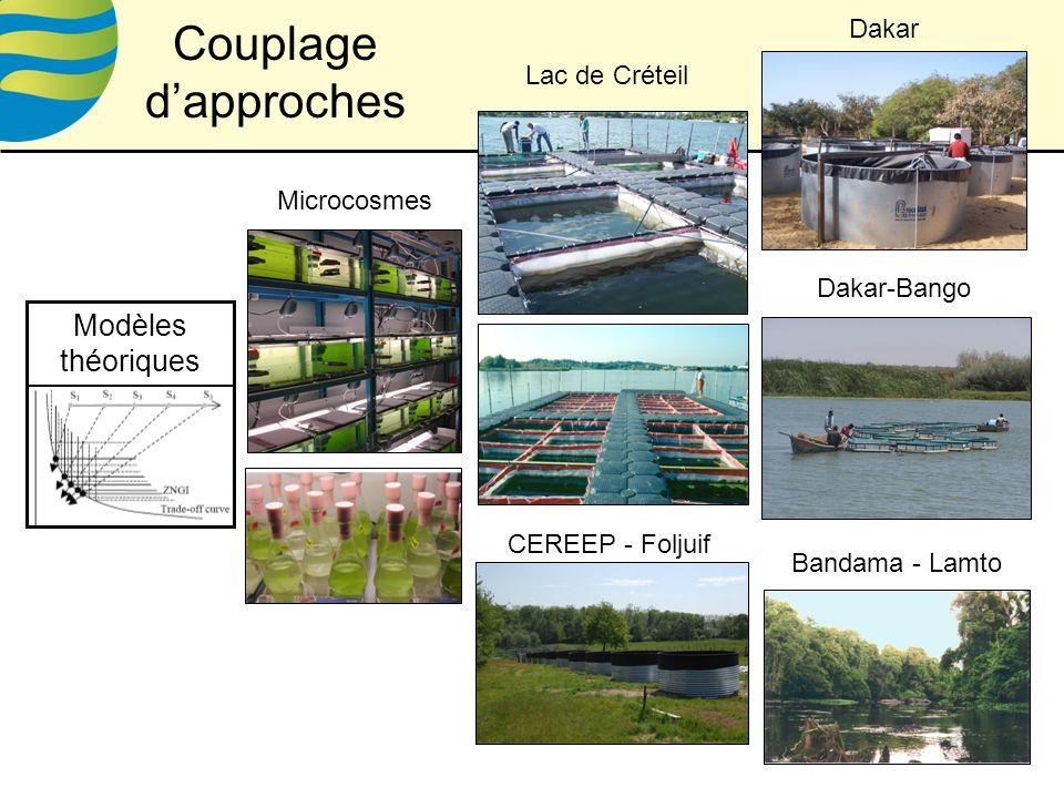 Lac de Créteil Microcosmes Modèles théoriques Dakar Dakar-Bango Bandama - Lamto CEREEP - Foljuif Couplage dapproches