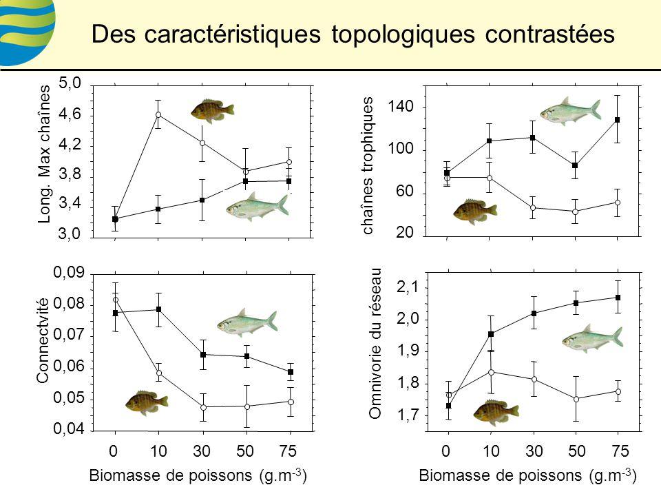 Des caractéristiques topologiques contrastées Biomasse de poissons (g.m -3 ) chaînes trophiques 20 60 100 140 3,4 3,8 4,2 4,6 3,0 5,0 Long.
