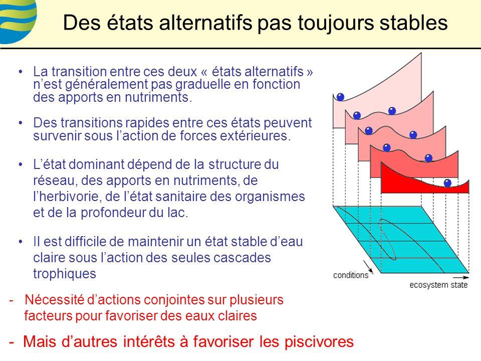 La transition entre ces deux « états alternatifs » nest généralement pas graduelle en fonction des apports en nutriments.