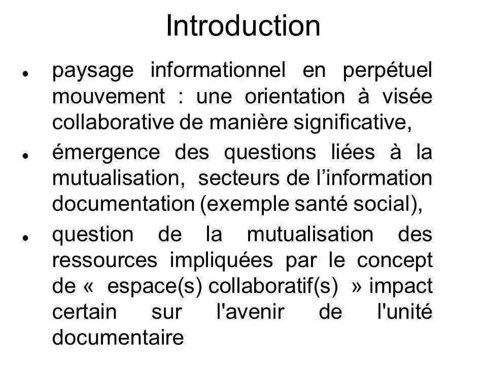 Introduction paysage informationnel en perpétuel mouvement : une orientation à visée collaborative de manière significative, émergence des questions l