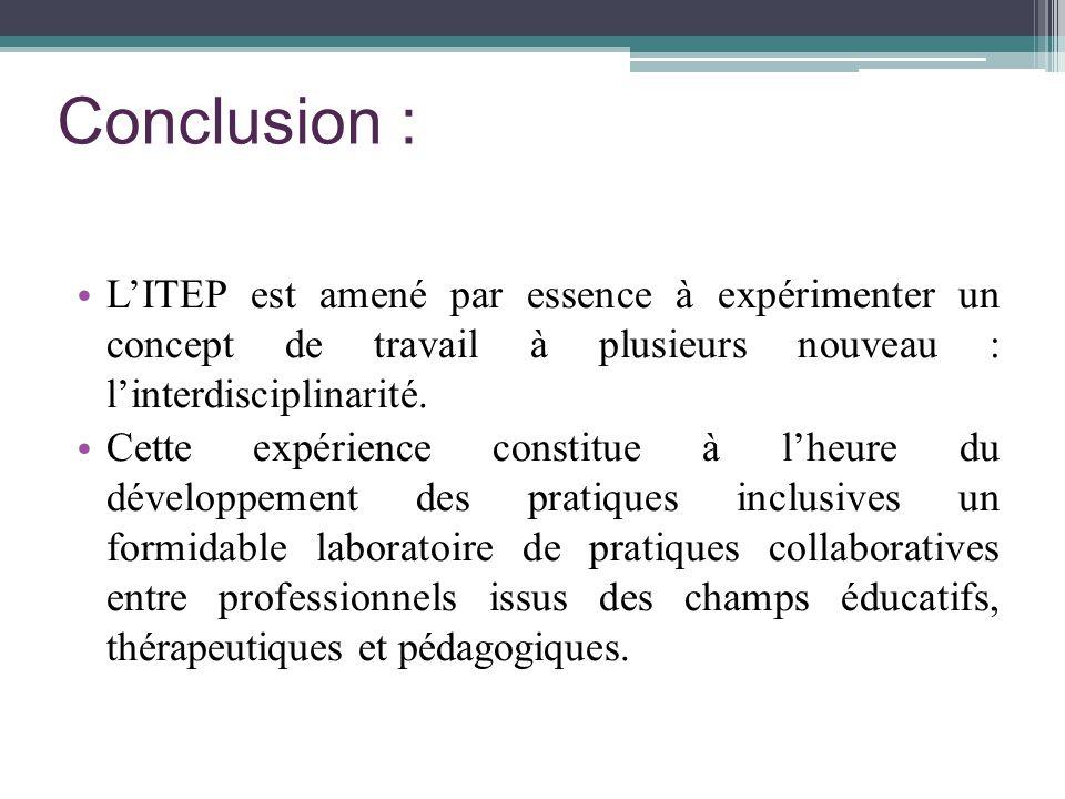Conclusion : LITEP est amené par essence à expérimenter un concept de travail à plusieurs nouveau : linterdisciplinarité. Cette expérience constitue à