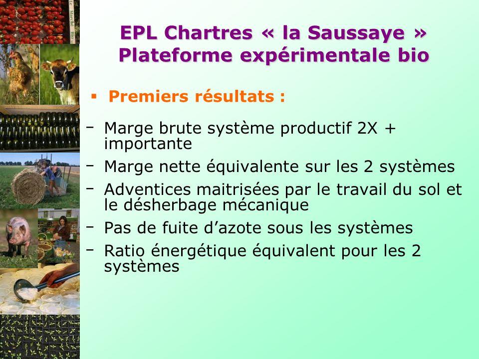 Marge brute système productif 2X + importante Marge nette équivalente sur les 2 systèmes Adventices maitrisées par le travail du sol et le désherbage