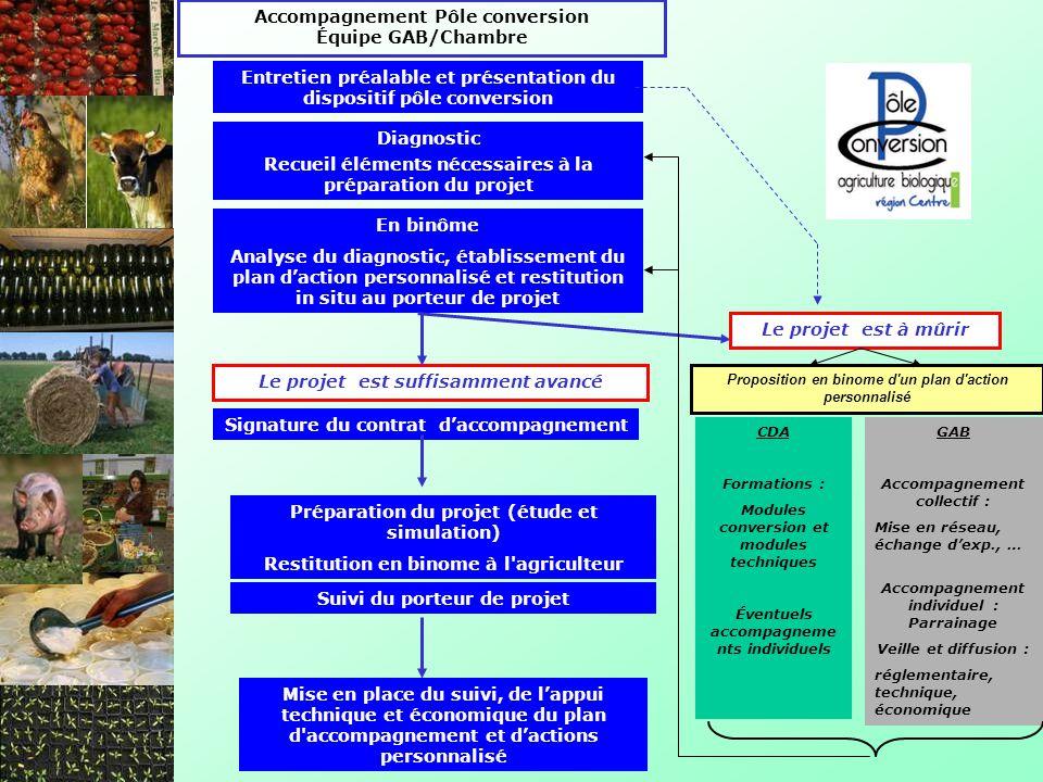 Diagnostic Signature du contrat daccompagnement En binôme Analyse du diagnostic, établissement du plan daction personnalisé et restitution in situ au