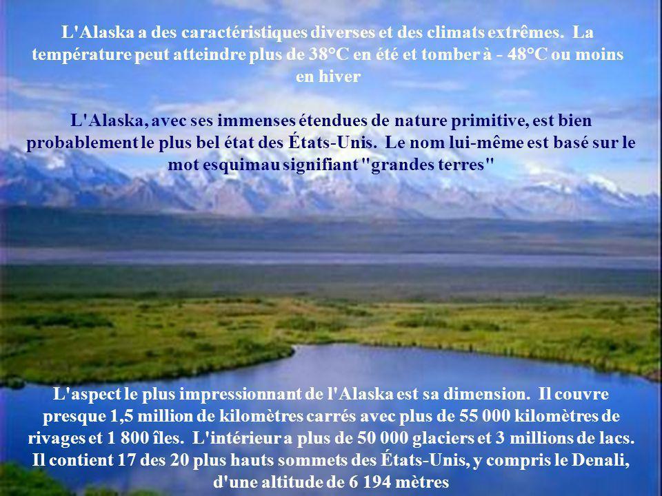 Le territoire de l'Alaska appartient aux États-Unis d'Amérique. Il a été cédé en 1867 par la Russie, pour la somme de 7,2 millions de dollars. Une som