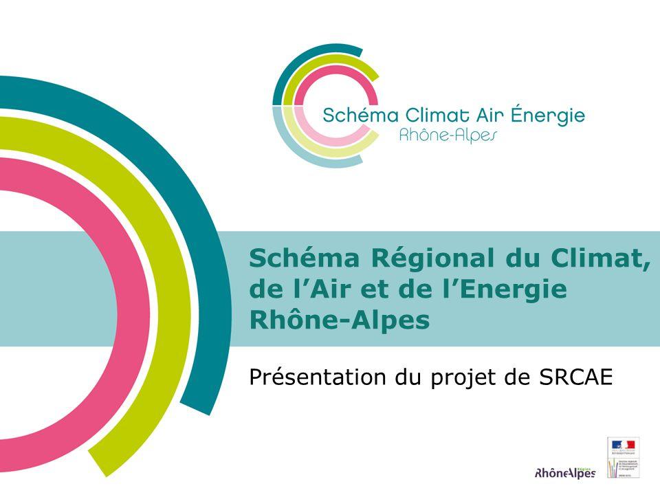 ETAT DES LIEUX Emissions de GES en 2005 47,8 MteCO 2 en 2005 11,8% des émissions nationales Principalement sous forme de CO 2 (82%) Secteurs les plus émetteurs: Transport Bâtiment Émissions non énergétiques de lagriculture non négligeables Présentation du SRCAE Rhône-Alpes12