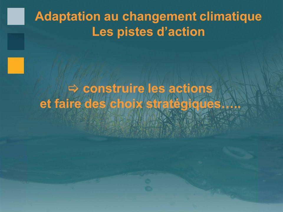 Adaptation au changement climatique Les pistes daction construire les actions et faire des choix stratégiques…..