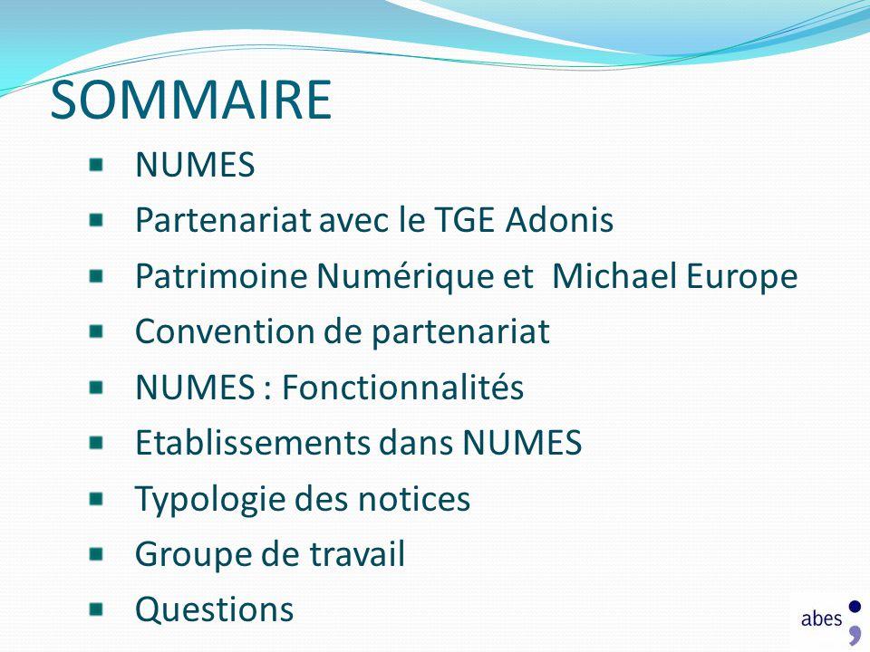 SOMMAIRE NUMES Partenariat avec le TGE Adonis Patrimoine Numérique et Michael Europe Convention de partenariat NUMES : Fonctionnalités Etablissements