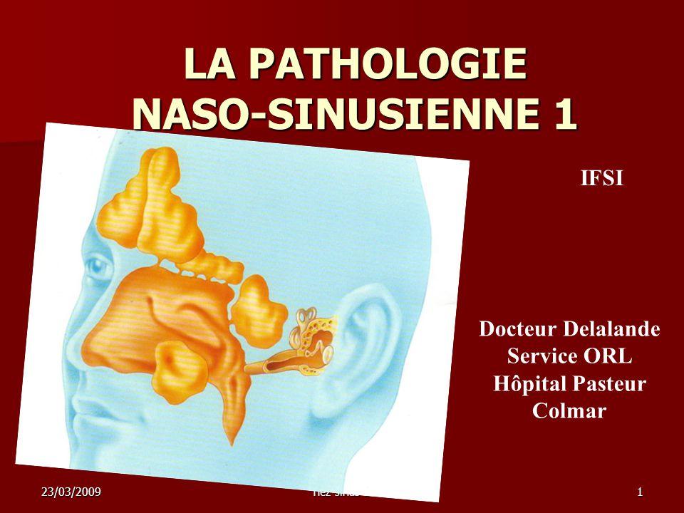 23/03/2009nez sinus 11 LA PATHOLOGIE NASO-SINUSIENNE 1 Docteur Delalande Service ORL Hôpital Pasteur Colmar IFSI