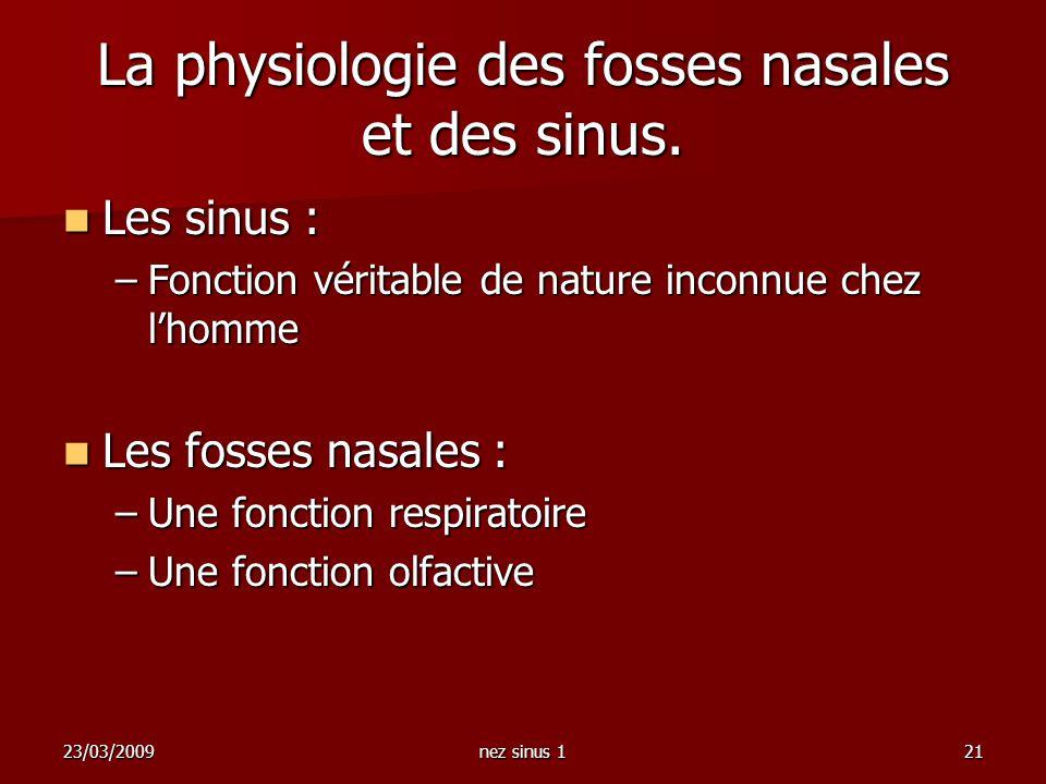 23/03/2009nez sinus 121 La physiologie des fosses nasales et des sinus. Les sinus : Les sinus : –Fonction véritable de nature inconnue chez lhomme Les