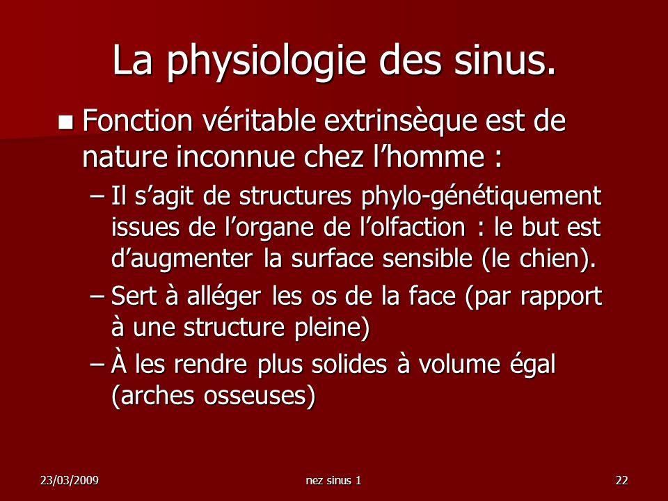 23/03/2009nez sinus 122 La physiologie des sinus. Fonction véritable extrinsèque est de nature inconnue chez lhomme : Fonction véritable extrinsèque e