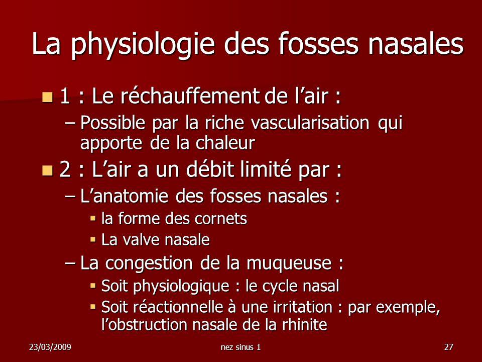23/03/2009nez sinus 127 La physiologie des fosses nasales 1 : Le réchauffement de lair : 1 : Le réchauffement de lair : –Possible par la riche vascula