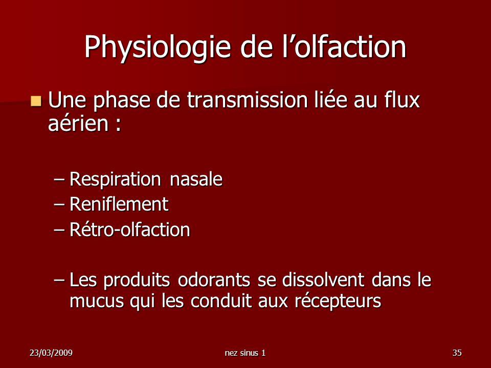 23/03/2009nez sinus 135 Physiologie de lolfaction Une phase de transmission liée au flux aérien : Une phase de transmission liée au flux aérien : –Res